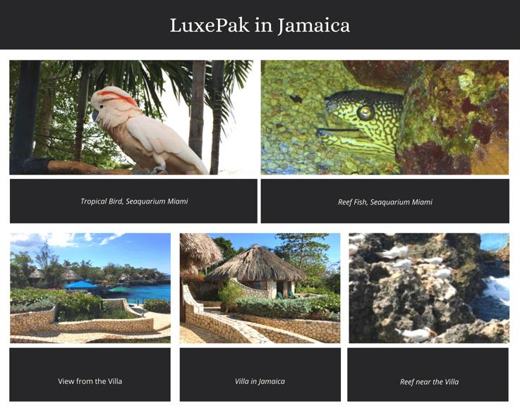 Jamaica Photo Collage-1